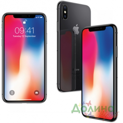 Смартфон Apple iPhone X 256GB Space Gray (MQAF2FS/A)